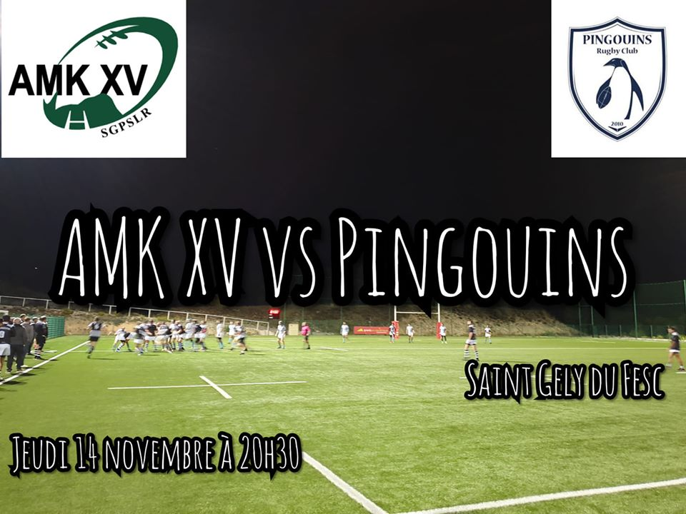 AMK XV : 14-11-19 A domicile contre les Pingouins